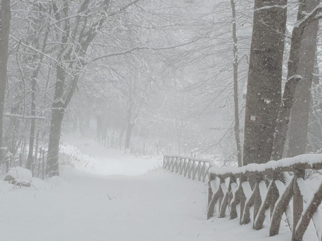 Maltempo: giovedì prevista neve in provincia di Salerno