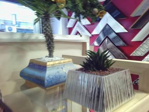 Piantine grasse con vaso personalizzato ed artigianale