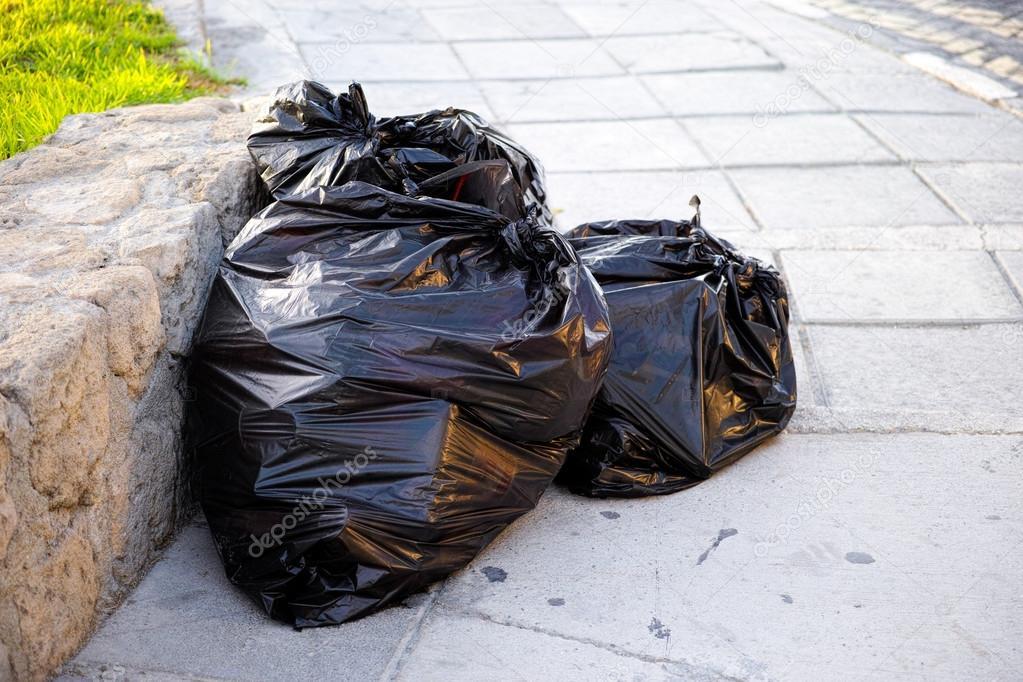 Cane ucciso e chiuso in sacchetto della spazzatura a Pagani