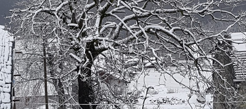 Campania: nevicata nella notte, monti Alburni imbiancati