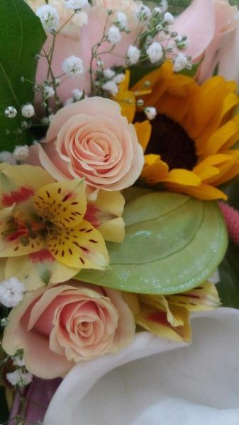 Anthurium, Girasoli, Rose e Calle