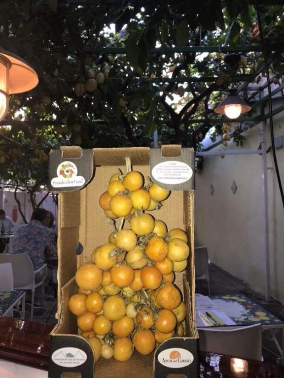 Le Eccellenze del Pineta 1903: Pomodorino verneteca sannita, Presidio Slow Food
