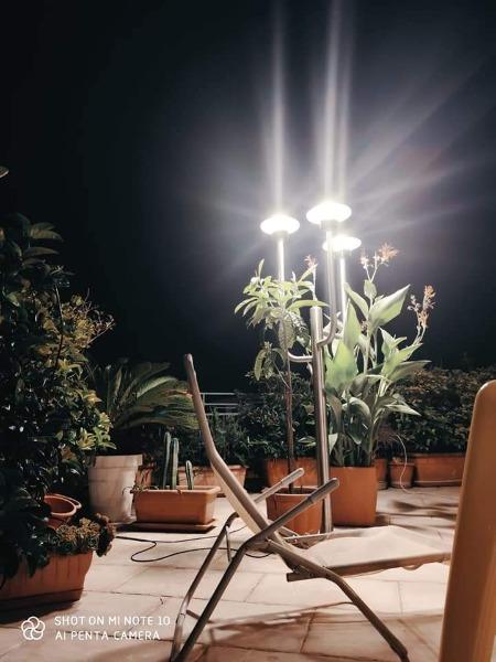 Lampioni inox mod. CACTUS