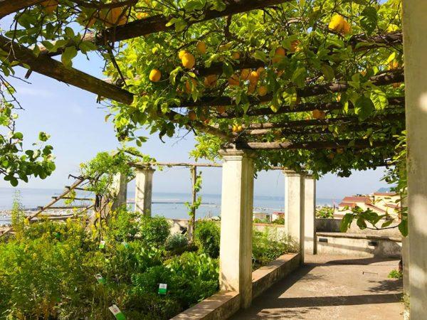 Il Giardino della Minerva si conferma tra i parchi più belli d'Italia