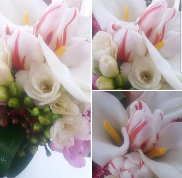 Bouquet Primaverile Calle Fresie e Tulipani