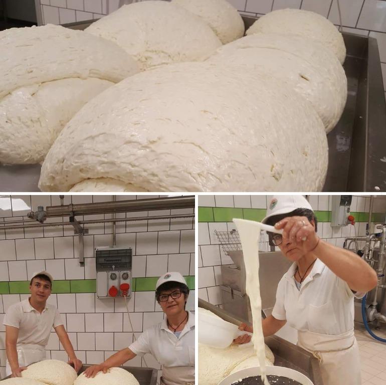 Si inizia a lavorare questa quantità notevole di mozzarella Bufala Campana DOP