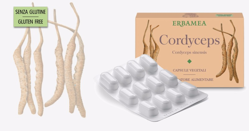 Cordyceps - Integratore Alimentare