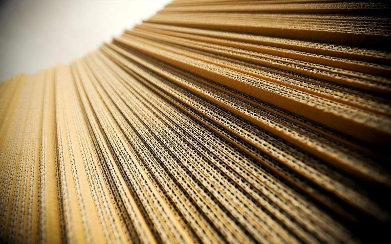 Distribuzione Carta e Cartone