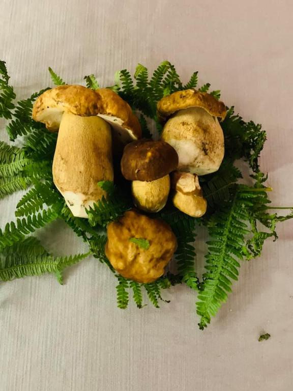 Che ne dite di un buon #raviolo ripieno di #ricotta di bufala ai #funghiporcini? Solo il top per i nostri clienti