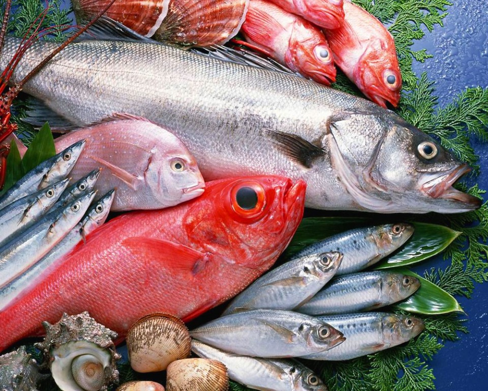 Da noi trovi anche Pesce Fresco del giorno