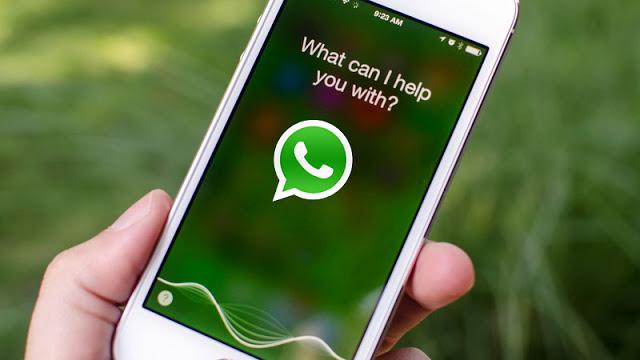 Novità da Apple: 'Siri leggerà i messaggi Whatsapp'